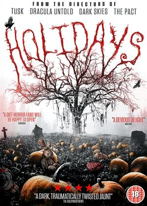 Holidays Online DVD Rental