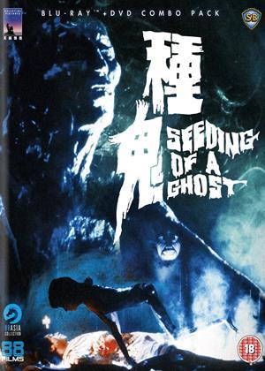 Seeding of a Ghost Online DVD Rental
