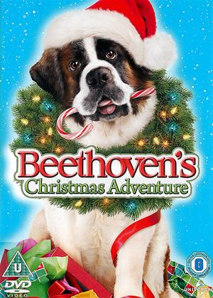 Beethoven's Christmas Adventure Online DVD Rental