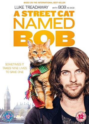 A Street Cat Named Bob Online DVD Rental