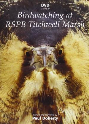 Birdwatching at RSPB Titchwell Marsh Online DVD Rental