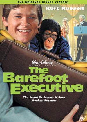 The Barefoot Executive Online DVD Rental