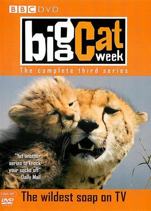 Rent Big Cat Week: Series 3 (aka Big Cat Diary: Series 3) Online DVD Rental