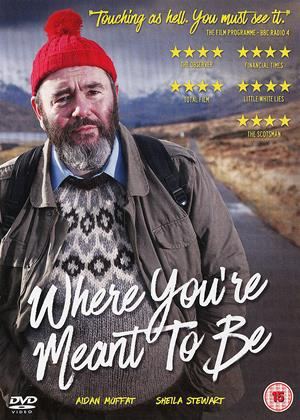 Where You're Meant to Be Online DVD Rental