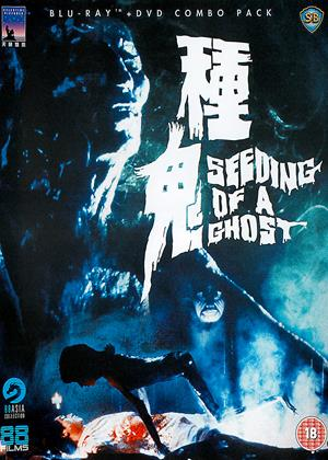 Seeding of a Ghost Online DVD Rental
