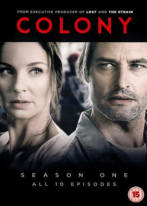Rent Colony: Series 1 Online DVD Rental