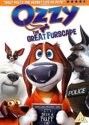 Ozzy Online DVD Rental