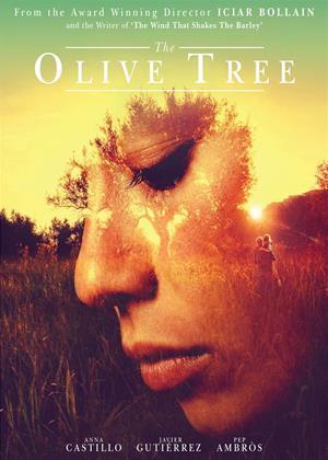 The Olive Tree Online DVD Rental