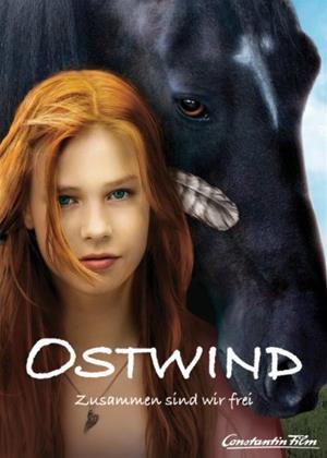 Windstorm Online DVD Rental