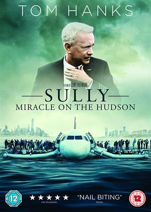 Rent Sully (aka Sully: Miracle on the Hudson) Online DVD Rental