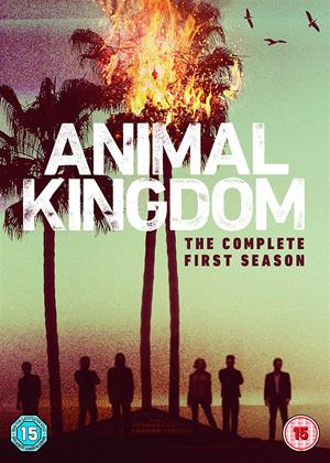Animal Kingdom: Series 1 Online DVD Rental
