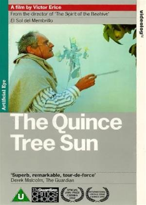 Rent The Quince Tree Sun (aka El Sol del membrillo / The Dream of Light) Online DVD Rental