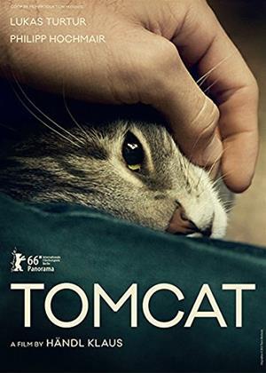 Tomcat Online DVD Rental