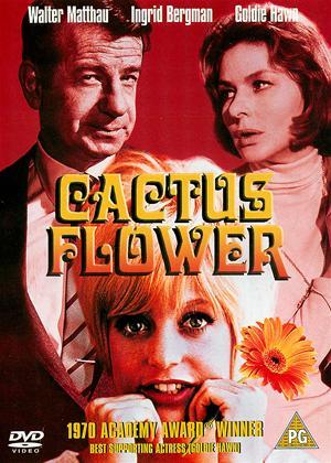 Rent Cactus Flower Online DVD & Blu-ray Rental