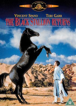 Rent The Black Stallion Returns Online DVD Rental