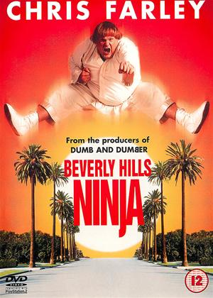 Rent Beverly Hills Ninja Online DVD Rental