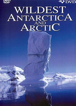 Rent Wildest Antarctica and Arctic Online DVD Rental