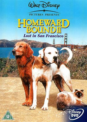 Rent Homeward Bound 2: Lost in San Francisco Online DVD Rental