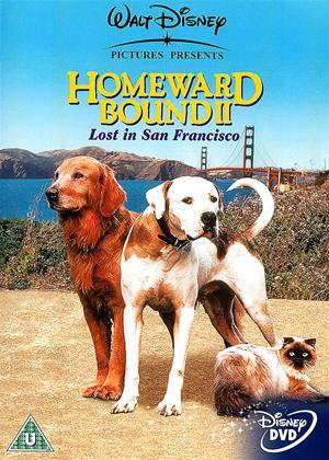 Homeward Bound 2: Lost in San Francisco Online DVD Rental