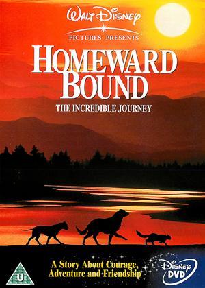 Rent Homeward Bound Online DVD & Blu-ray Rental
