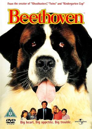 Rent Beethoven Online DVD Rental