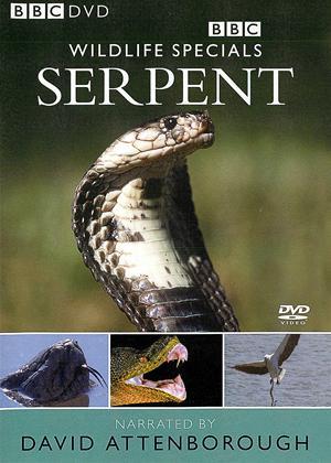 Rent Wildlife Special: Serpent Online DVD Rental