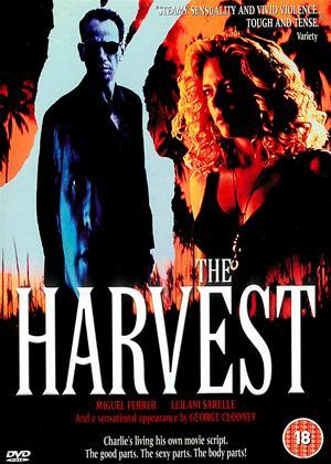 Rent The Harvest Online DVD Rental