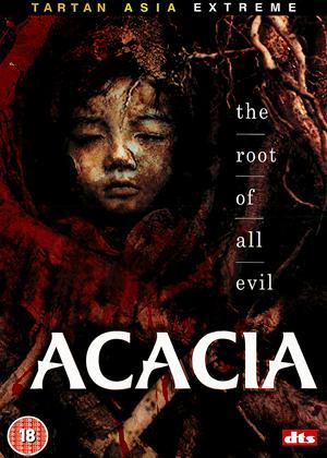 Rent Acacia (aka Akasia) Online DVD Rental