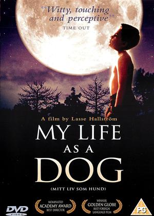 My Life as a Dog Online DVD Rental
