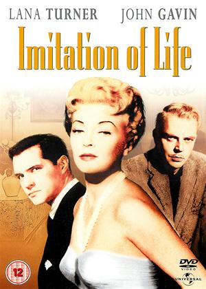 Rent Imitation of Life Online DVD Rental