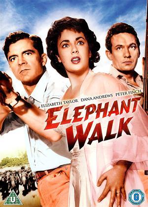 Rent Elephant Walk Online DVD & Blu-ray Rental