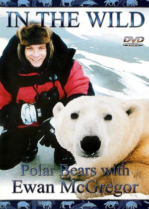 Rent In the Wild: Polar Bears with Ewan Mcgregor Online DVD Rental
