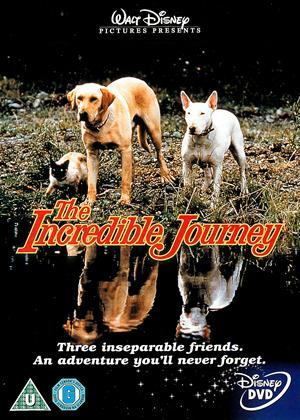 The Incredible Journey Online DVD Rental