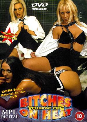 Rent Bitches on Heat: Vol.1 Online DVD Rental