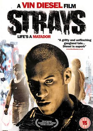 Rent Strays Online DVD Rental