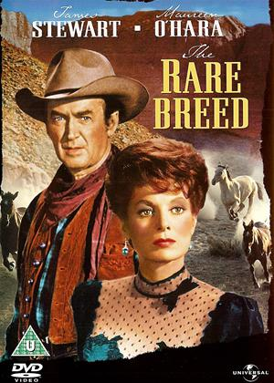 Rent Rare Breed Online DVD Rental