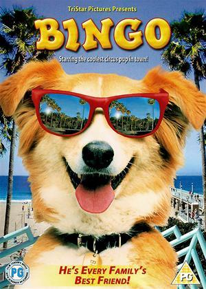 Rent Bingo Online DVD Rental