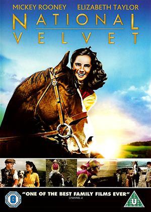 National Velvet Online DVD Rental