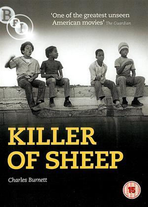 Rent Killer of Sheep Online DVD Rental
