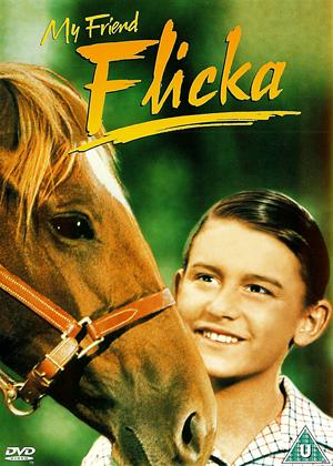 Rent My Friend Flicka Online DVD & Blu-ray Rental