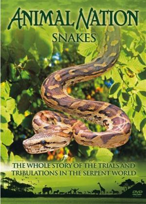 Rent Our World Their World: Snakes: The Whole Story Online DVD Rental