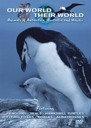 Rent Our World Their World: Animals of Antarctica, Australia and Hawaii Online DVD Rental