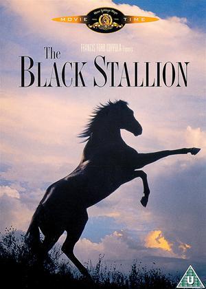 Rent The Black Stallion Online DVD Rental