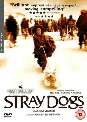 Rent Stray Dogs (aka Sag-haye velgard) Online DVD Rental