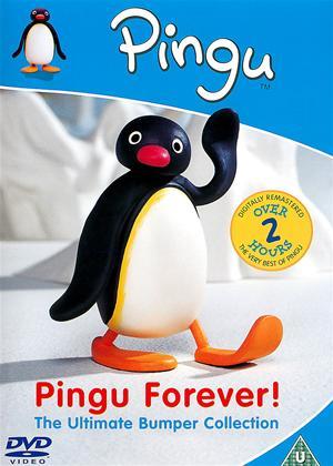 Rent Pingu Forever: Best Of Online DVD Rental
