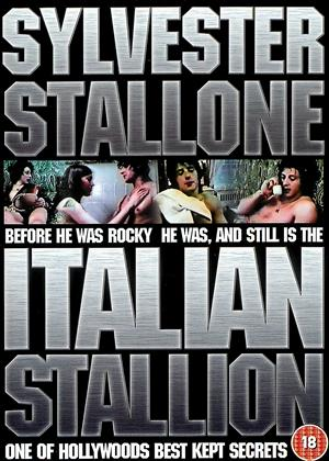 Rent Italian Stallion Online DVD Rental