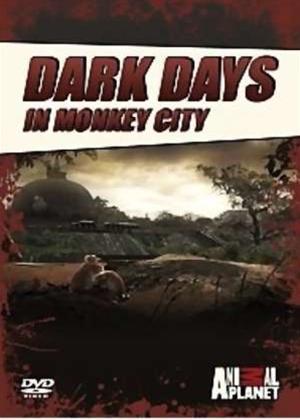 Rent Dark Days in Monkey City Online DVD Rental