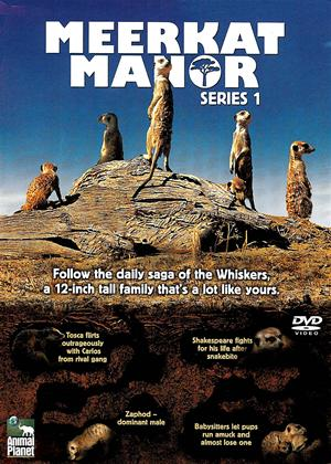 Rent Meerkat Manor: Series 1 Online DVD Rental