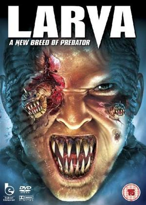 Rent Larva Online DVD Rental