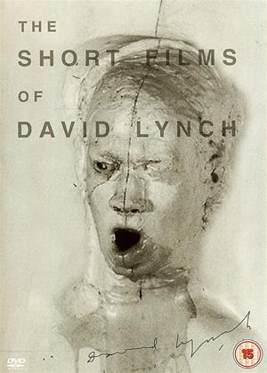 Rent Short Films of David Lynch Online DVD Rental